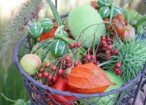 C1237-Herbstkoerbchen